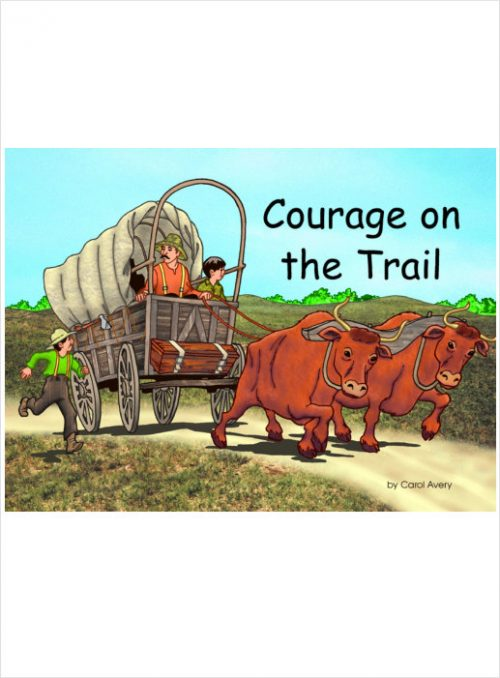VBS Courage on the Trail
